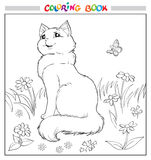 Coloring book or page. Cat sit on grass among flowers and butterfly. Vector illustration Stock Photo