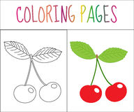 Coloring book page. Cherry. Sketch and color version. Coloring for kids. Vector illustration Stock Images