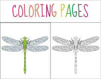 Coloring book page. Dragonfly. Sketch and color version. Coloring for kids. Vector illustration Royalty Free Stock Image