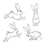Coloring book or page. Four fanny rabbits. Royalty Free Stock Images