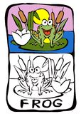 Coloring book page: frog. Printable color book page: letter F Stock Photo