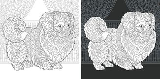 Coloring book page with pekingese dog. Coloring Page. Coloring Book. Colouring picture with Pekingese or Japanese Chin Dog drawn in zentangle style. Antistress stock illustration