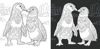Coloring book page with penguin couple. Coloring Page. Coloring Book. Colouring picture with Penguin couple drawn in zentangle style. Antistress freehand sketch stock illustration