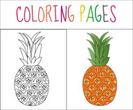 Coloring book page. Pineapple. Sketch and color version. Coloring for kids. Vector illustration.  royalty free illustration