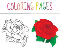 Coloring book page, Rose. Sketch and color version. Coloring for kids. Vector illustration.  stock illustration
