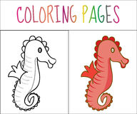 Coloring book page, seahorse. Sketch and color version. Coloring for kids. Vector illustration.  vector illustration