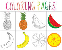 Coloring book, page set. Fruits collection. Sketch and color version.  for kids. Childrens education. Vector illustratio Stock Photography