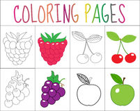 Coloring book, page set. Fruits collection. Sketch and color version.  for kids. Royalty Free Stock Image