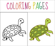 Coloring book page, turtle. Sketch and color version. Coloring for kids. Vector illustration.  royalty free illustration