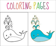 Coloring book page, whale. Sketch and color version. Coloring for kids. Vector illustration.  stock illustration