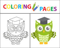 Coloring book page. Wise owl wearing glasses. Sketch outline and color version. Coloring for kids. Childrens education. Vector illustration Stock Image