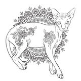 Coloring book pages. Hairless sphynx cat with mehndi ornaments vector illustration Royalty Free Stock Photography