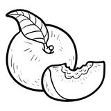 Coloring book, Peach. Coloring book for children, Peach royalty free illustration
