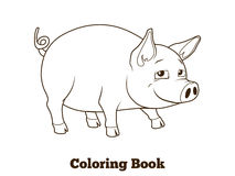 Coloring book pig cartoon educational illustration Stock Photos