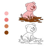 Coloring book (pig) Stock Photos