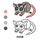 Coloring book, Possum Stock Photo