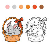 Coloring book (rabbit in basket) Stock Image