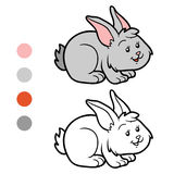 Coloring book (rabbit) Stock Photo