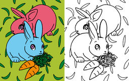 Coloring book rabbits. Colors and black and white version of a couple of rabbits for a coloring book Royalty Free Stock Image