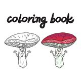 Coloring book with rassule, a edible mushroom. Stock Images