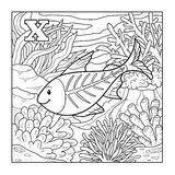 Coloring book (x-ray fish), illustration (letter X) Stock Photography