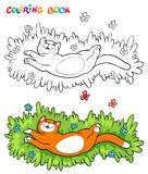 Coloring book with red cat on the grass with two butterflies - vector illustration. Royalty Free Stock Photo
