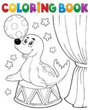 Coloring book seal playing with ball Royalty Free Stock Photo