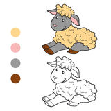 Coloring book (sheep) Stock Photo