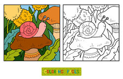 Coloring book (Snail and background) Stock Photography