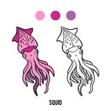 Coloring book, Squid. Coloring book for children, Squid vector illustration