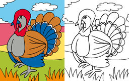 Coloring book turkey Royalty Free Stock Image