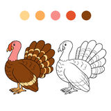 Coloring book (turkey) Royalty Free Stock Photography