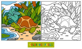 Coloring book (turtle) Royalty Free Stock Photography