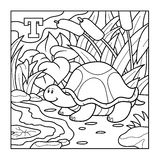 Coloring book (turtle), colorless alphabet for children: letter. Coloring book for children (turtle), colorless alphabet for children: letter T Stock Photography