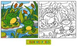 Coloring book (two frogs and background) Royalty Free Stock Photography