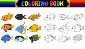 Coloring book various fishes Royalty Free Stock Photos