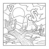 Coloring book (vulture), illustration (letter V) Stock Photos