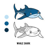 Coloring book, Whale shark Stock Photography