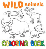 Coloring book with wild animals Royalty Free Stock Images