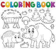 Coloring book with wild pigs theme 1 Royalty Free Stock Photography