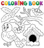 Coloring book winter bird theme 1 Stock Image