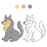 Coloring book (wolf) Royalty Free Stock Photos