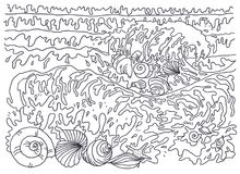 Template for coloring. Coloring Picture sea breeze, shells. Coloring books for children and adults. An image of nature. Black and white picture, coloring, linear Stock Photo