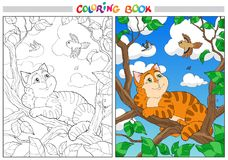 Coloring cartoon cat on a branch and Birds in the sky. For adults vector illustration. Black and white lines vector illustration