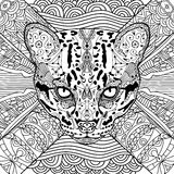 Coloring cat book for adults Stock Images