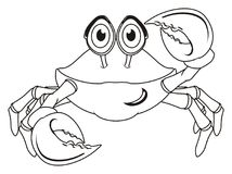 Not colored crab. Coloring crab on a white background stock illustration