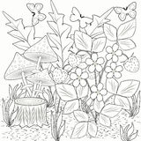 Coloring decorations flowers strawberries and mushrooms in the picture black and white. Royalty Free Stock Photo