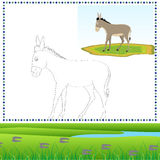 Coloring Donkey. Coloring book of Farm animals 04 - Donkey stock illustration