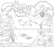 Coloring duck pond Royalty Free Stock Image