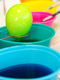 Coloring Easter Eggs. Dipping eggs into bright colorful dyes for making Easter eggs Royalty Free Stock Images